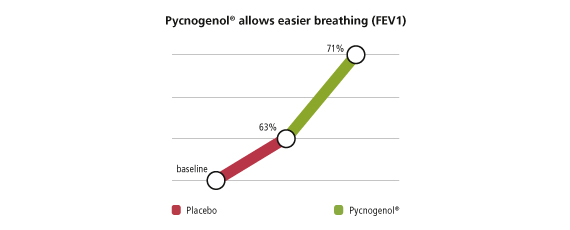 Pycnogenol allows easier breathinig