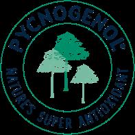 Pycnogenol Pycnogenol French Maritime Pine Bark Extract By